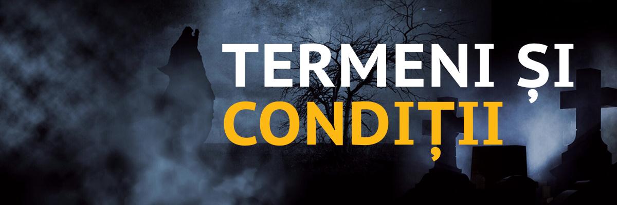 TERMENI CONDITII_1200x400